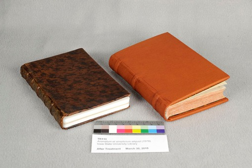 Previous binding on left; rebound volume on right.