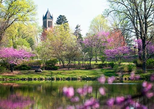 ISU spring