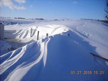 snowoverfencedownload