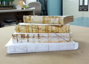 Cleaned spines of general collection books